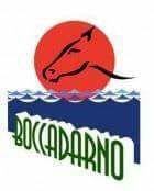 Country a Boccadarno @ centro ippico boccadarno   Marina di Pisa   Toscana   Italia