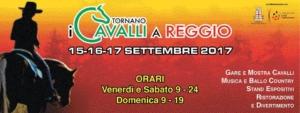 WS alla Fiera del cavallo a Reggio Emilia @ fiera